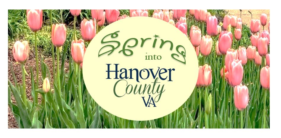 Spring into Hanover County logo over tulips
